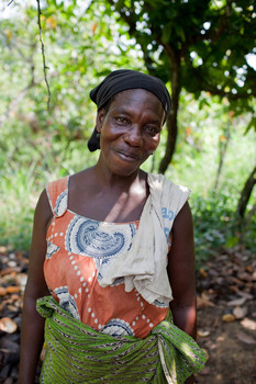 Cocoa farmers in Ivory Coast